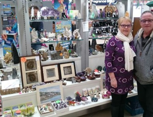 Exciting new exhibitor for February's Cheltenham Show